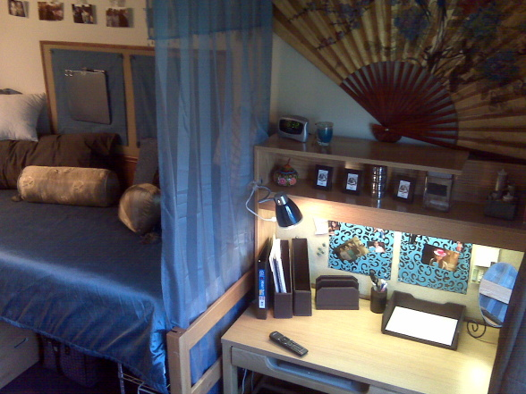 Designed To The Nines  Dorm Room Decorating ~ 072157_Dorm Room Themes For Guys